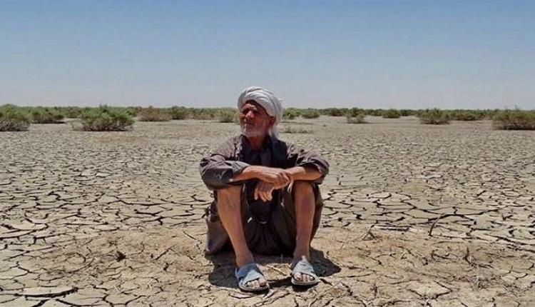 مرکبات و خرما قربانی خشکسالی امسال 74 درصد مساحت استان درگیر خشکسالی -  پایگاه خبری «کرمان نو»   صداقت، انصاف و بیطرفی
